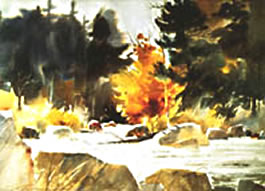 Painting Streams, Rocks and Trees in Watercolor Instructional Video or DVD by watercolor painting artist Tony Couch. Tony Couch has 10 watercolor and art instruction videos, several books on watercolor painting and teaches watercolor workshops across the U.S. and abroad